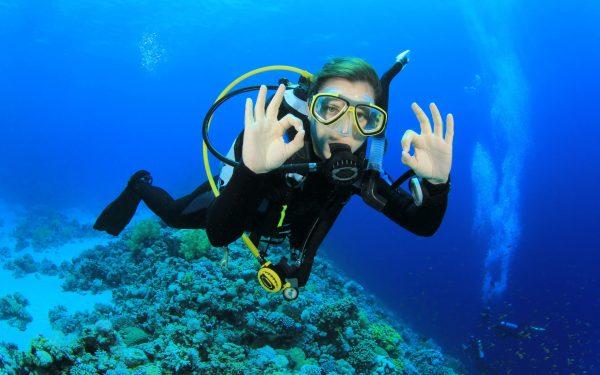 PADI Diving Course in Malaysia: Travlapp